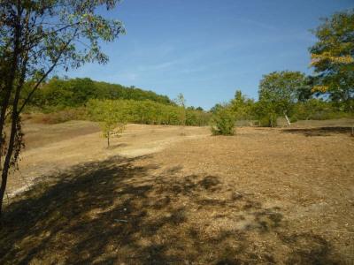 Terrain à bâtir Monsegur