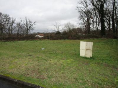 Narrosse - terrain constructible viabilisé