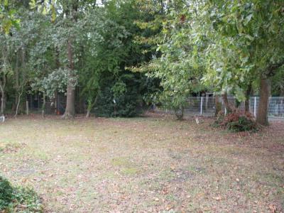 Terrain boisé de 1000 m² environ