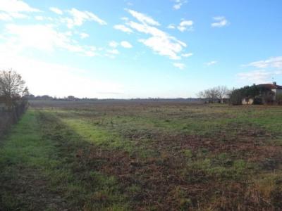 Terrain diffus de 800 m² avec jolie vue dégagée