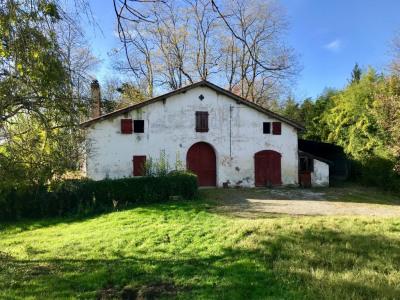 Ruines du château d'Aspremont Peyrehorade 6 pièce
