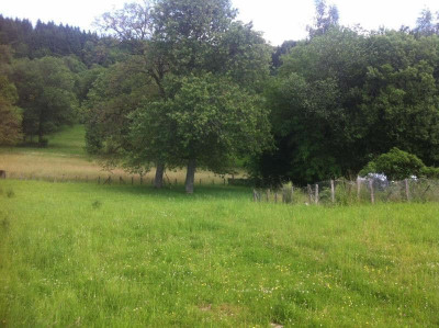 Vente terrain Cornod