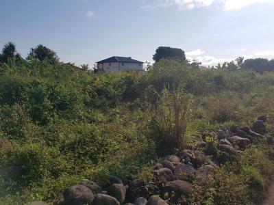 Terrain constructible de 500 m²