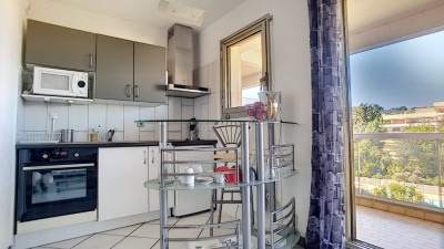 Appartement Villeneuve Loubet 1 pièce (s) 29.07 m²