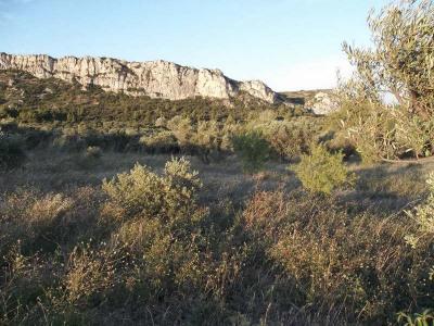Vente terrain Eyguieres