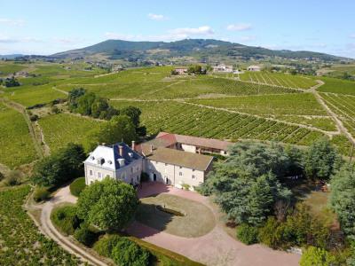 Beaujolais, château entouré de son vignoble