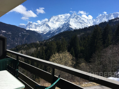 APARTMENT FOR SALE IN SAINT GERVAIS 74170