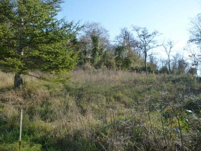 Site  Tournon d Agenais