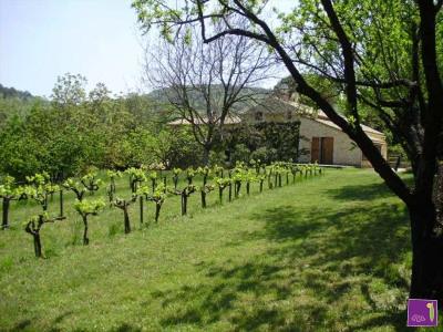 Farmhouse 10 rooms