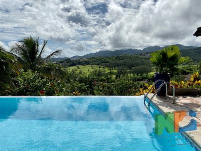 Magnifique villa te type F4 avec mezzanine, grande terrasse,