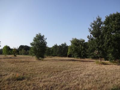 Terrain viabilisé de 530 m² au calme