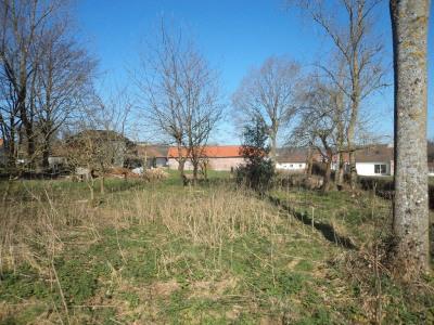 Terrain Vaudringhem 2000 m2