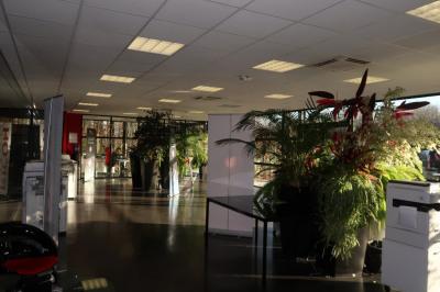 Local commercial Limoges 9 pièce (s) 678 m²
