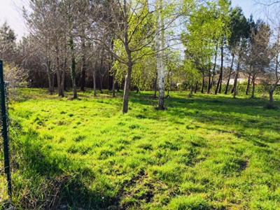 Magnifique terrain 2299m² - biscarrosse
