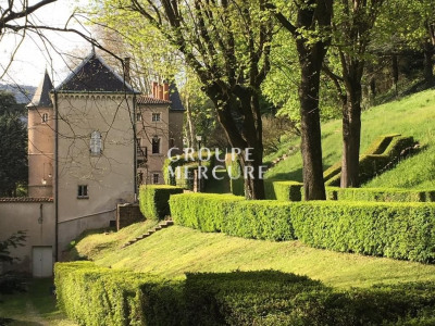 A vendre - château - lyon / caluire et cuire