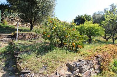 Villa 5 pièces-Jardin 216m²-79 M2-Collioure-Vue dégagée