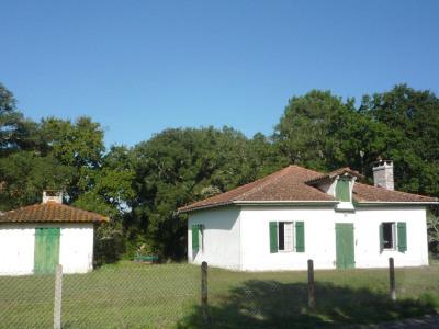 Maison Léon 3 pièce (s) 80 m²