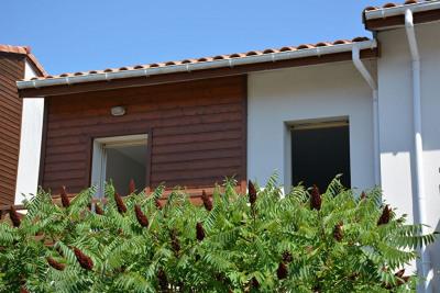 Appartement Lit Et Mixe 3 pièce (s) 64 m²