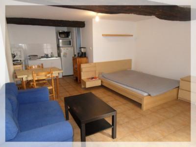 Appartement Ancenis 1 pièce (s) 28 m²