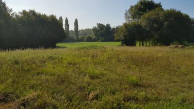 Terrain Pontonx Sur L Adour 1132 m²