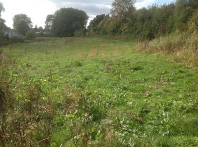 Terrain agricole (Paturage) de 11 455 m²