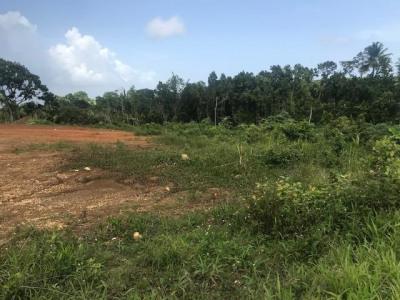 Terrain a bâtir petit bourg - 1000 m²
