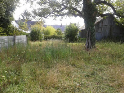 Vente terrain Nort sur Erdre (44390)