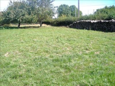 Parcelle (s) de terrain à bâtir d'une superficie d'environ 16