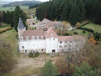 Propières - Château de 1400 m² à rénover - Parc de 2.2 hecta