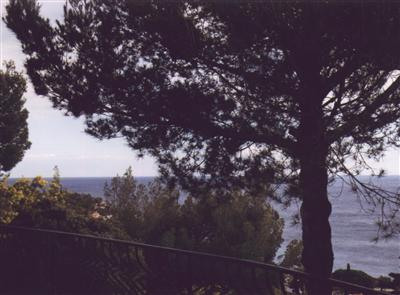 Vacation rental house / villa Les issambres 2200€ - Picture 2