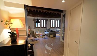 Annecy vieille ville- appartement style loft