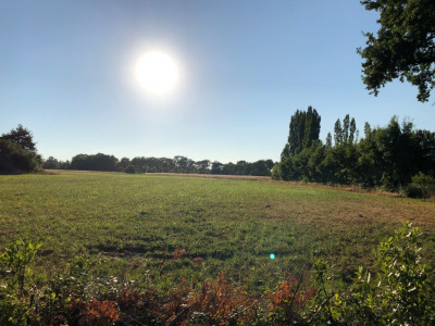 Terrain constructible st philbert de grand l. - 488 m²