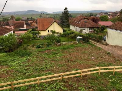 Terrain de construction à Wangen