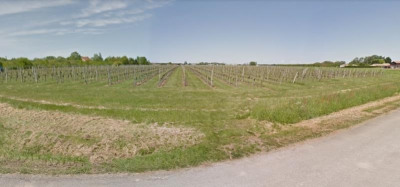 Propriété viticole