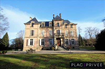 Demeure de prestige vosges - 19 pièce (s) - 750 m²