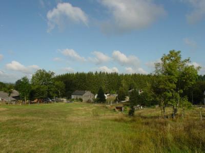 Grand terrain de plus de 3600 m² avec petit ruisseau