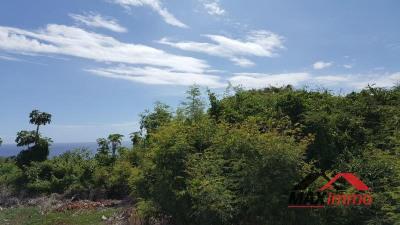 Terrain constructible petite île - 38000 m²
