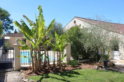 Maison Challans 5 pièce (s) 249 m²