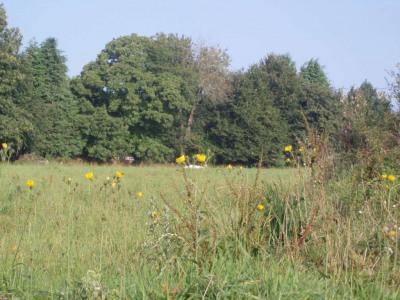 Terrain Pontivy 5500 m²