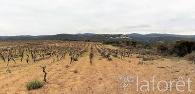 Vente terrain Roquessels