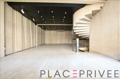 Commercial/professionnel nancy - 217 m²