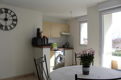 Appartement Canejan 2 pièce (s) 42 m²