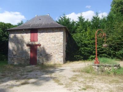 Vente de prestige maison / villa Chateaubriant (44110)