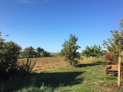 Vente terrain de construction à Saessolsheim