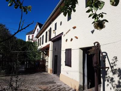 Maison Neuvillers Sur Fave 6 pièce (s) 1500 m²
