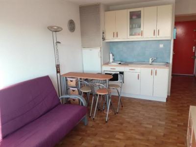 Appartement Le Grau Du Roi 1 pièce (s) 20 m²