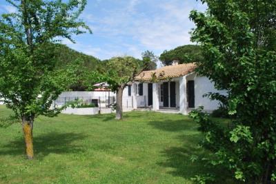 Maison Aigues Mortes 6 pièce (s) 200 m²