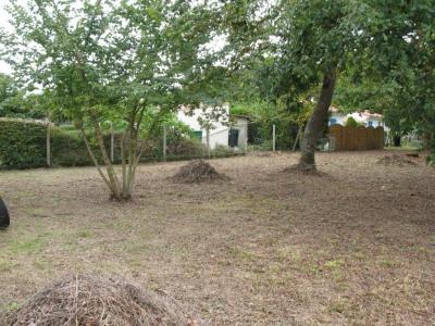 Terrain boisé de 580 m² environ