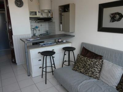 Appartement Le Grau Du Roi 1 pièce(s) 16 m2