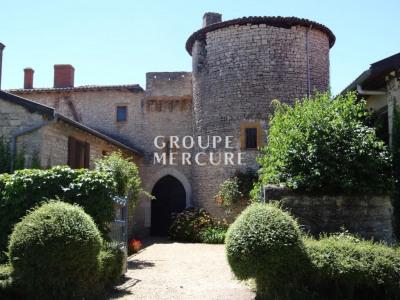 A vendre - château - beaujolais sud